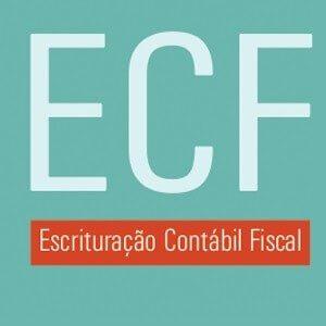 ECF 2017: um guia para não errar na declaração